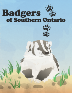 Badgers of Southern Ontario activity book coverpage