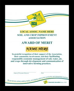 Example of Award of Merit certificate