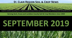St. Clair Regional Newsletter coverpage - September 2019