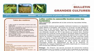 OMAFRA Crop Talk French - March 2020
