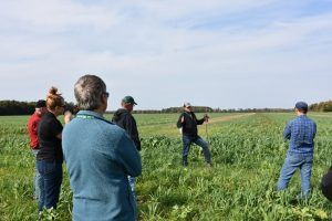 People in field at an ONFARM site in Lambton County