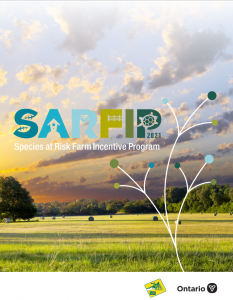 Image of SARFIP brochure cover
